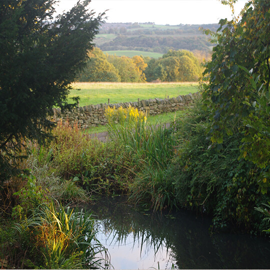 views - Glamping North East